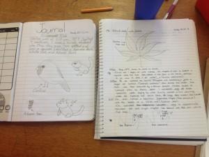 EcologyJournals1